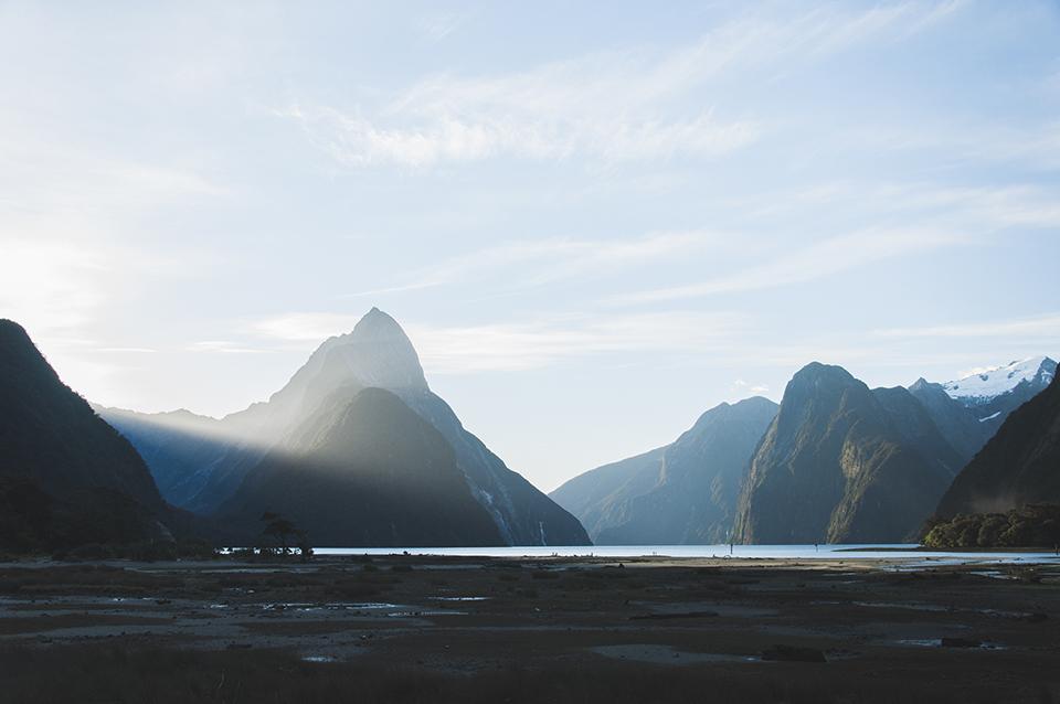 NZ_7.jpg