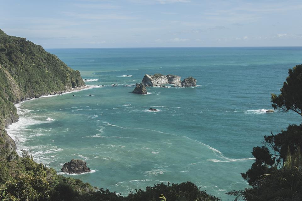 NZ_45.jpg