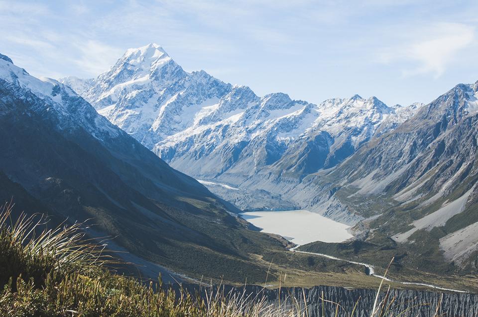 NZ_23.jpg
