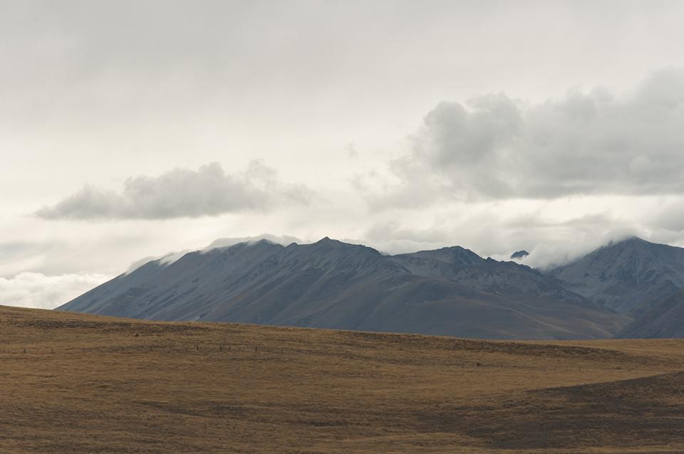 NZ_35.jpg