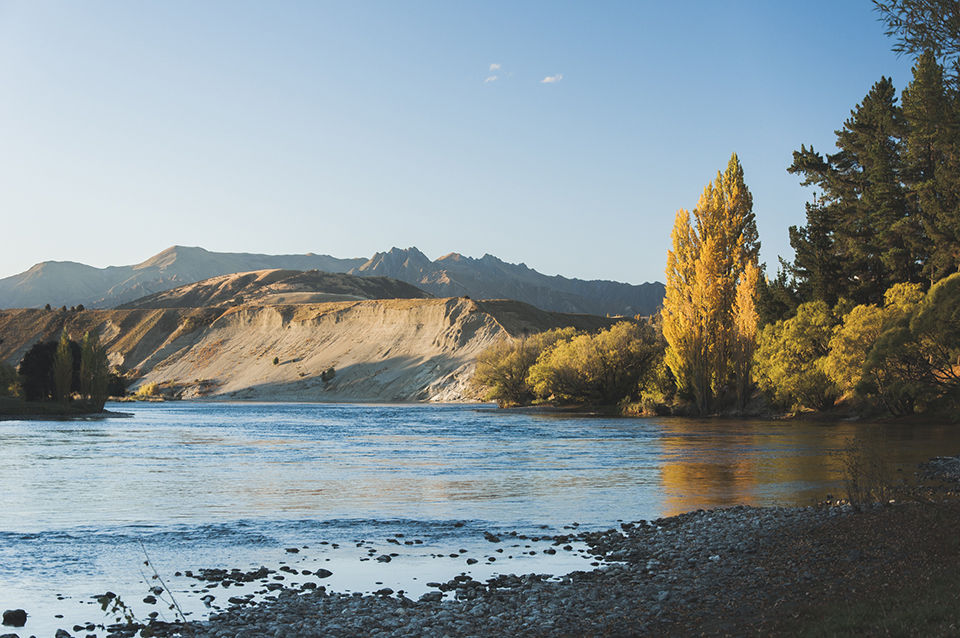 NZ.jpg
