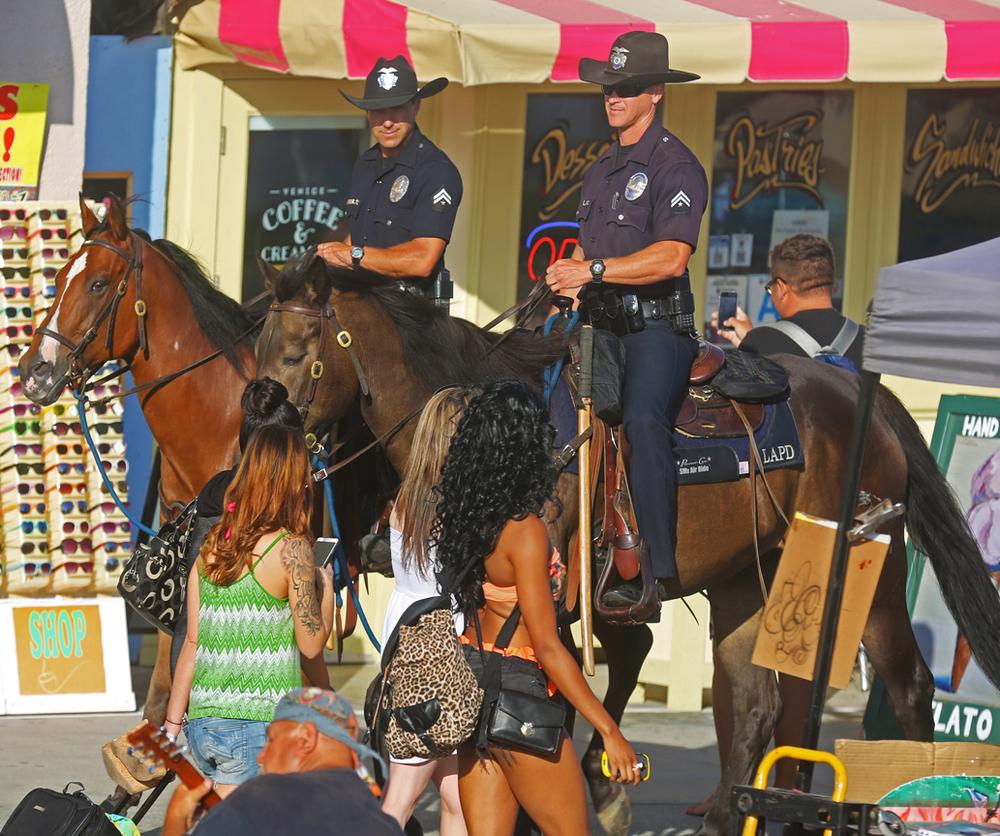 HORSE_COPS.jpg
