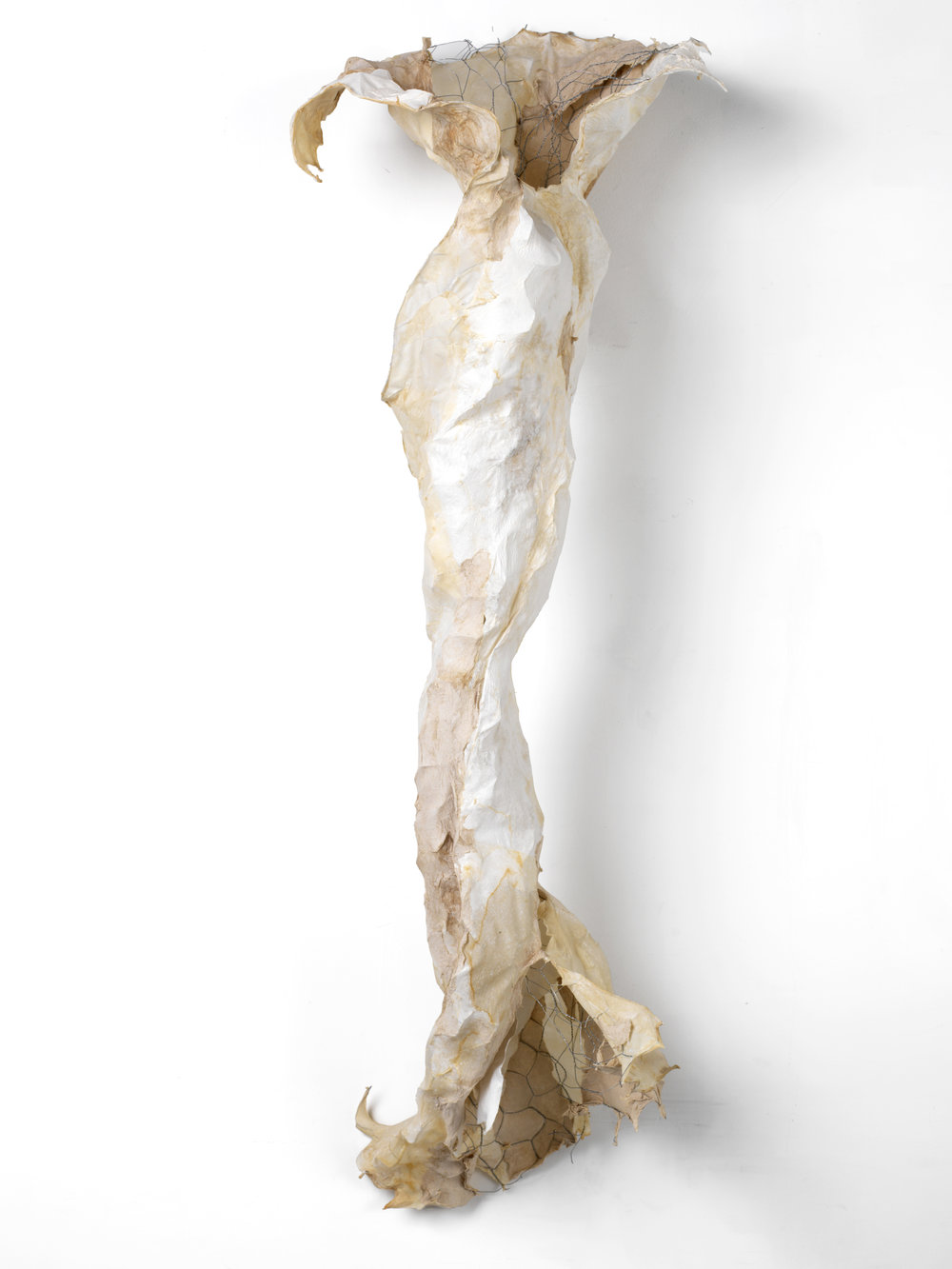 BONE RIBBON, 2016
