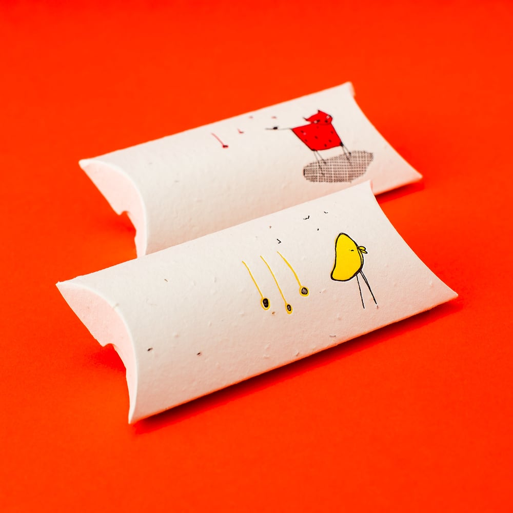 Porridge Papers Plantable Seed Paper — Sweet Beyond