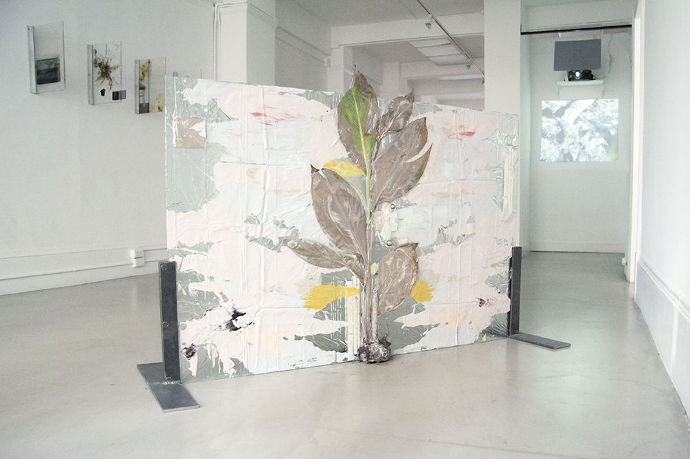 """Subaqueous Canna Pretoria (Rorschach),"" 2013.Plant, resin, paint, ceramic tiles. 58 x 40 inches"