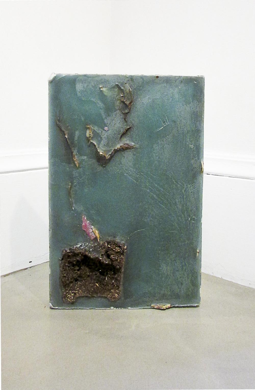 """Cross Section Plant,"" 2013. Wax, plants, linoleum. 18 x 13 inches"