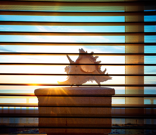 Conch Shell and Sunrise, $29.99, Archival Pigment Print, 30 x 40 inches, 2009