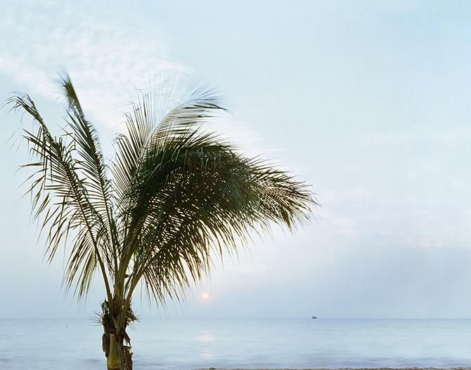 Lake Michigan Coast, Archival Pigment Print, 36 x 38 inches, 2009