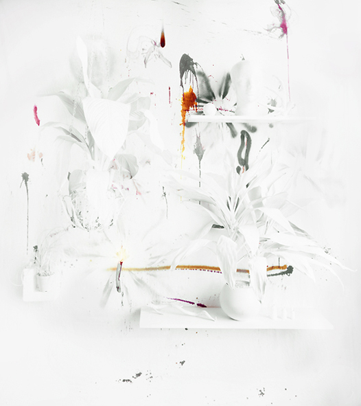 Whitescape, Archival Pigment Print, 42 x 52 inches, 2009