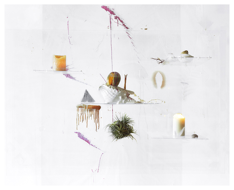 All is One (Mango, Tillandsias, and Sea Salt), Archival Pigment Print, 33 x 37 inches, 2010