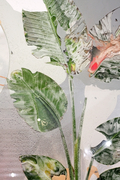 Detail, Pressed Plant (Anaphase), 2012, Philodendron selloum, latex paint, spray paint, glass, resin, mirror
