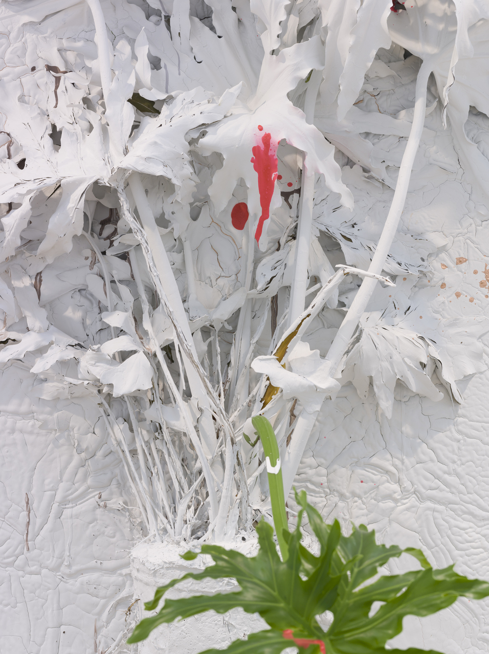 Detail, Pressed Plant (Hanging Gardens), 2012, Banana palm, latex paint, spray paint, glass, resin, mirror, glass, bone, porcelain, 92 x 45 inches