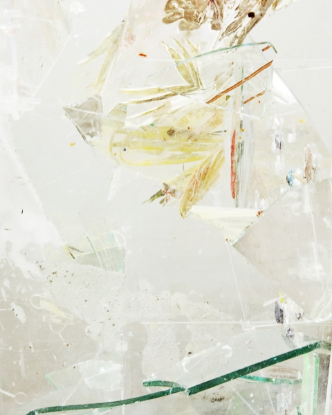 Time to Live in the Scattered Sun #5, 2012, Archival Pigment Print, 9 x 11 inches, 5/5 + 2 AP
