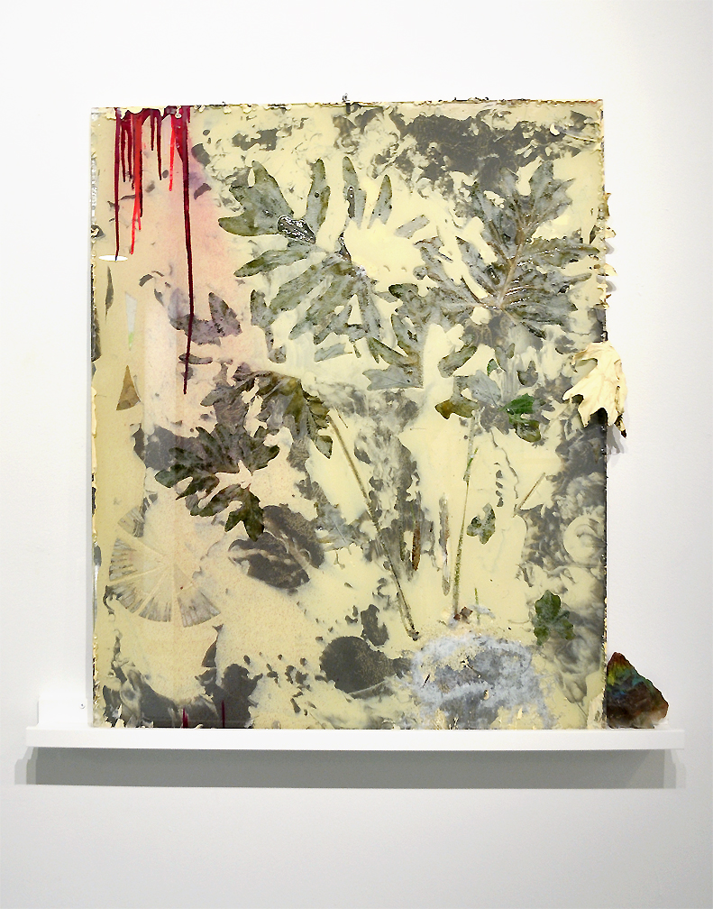 Explore Every Aspect of the Finite, 20111, Plants, glass, resin, latex paint, mixed media, 30 x 37 inches