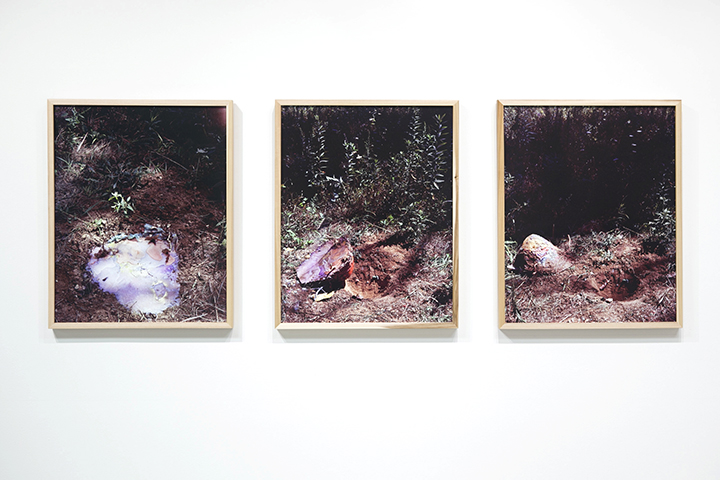 Excavation on Cobra Lilly Mountain #1-3, 2012, Archival Pigment Prints, 22 x 27 inches each
