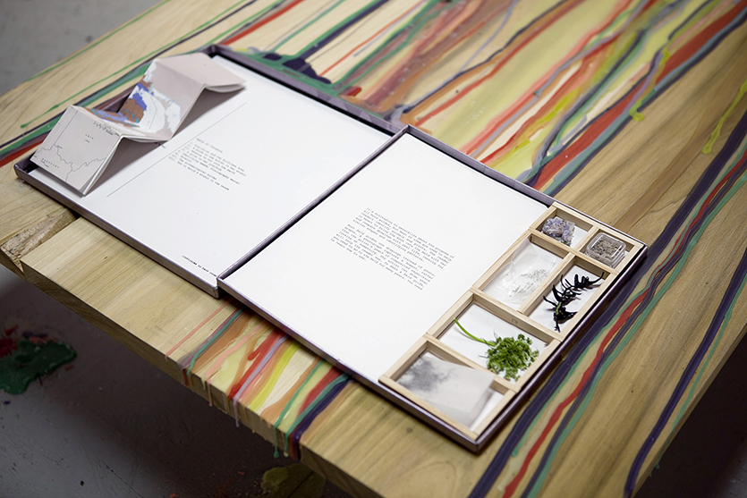 Art in the Earth: A Field Guide from the Soil to the Studio, 2012, Appropriated LP Compilation Box, archival pigment prints, mixed media