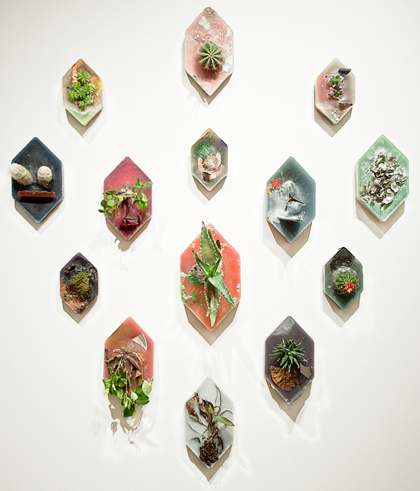 The Golden Ration (Configuration #2), 2011, Wax and mixed media, various dimensions