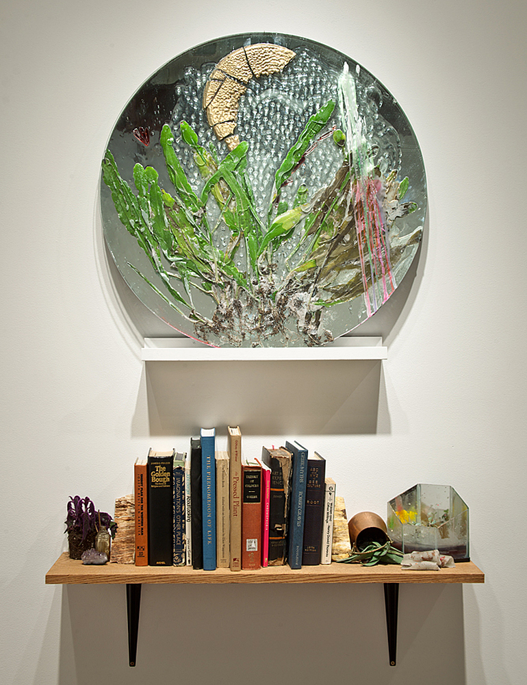 (above) The Primal Plant Pressed (After Goethe), 2011, Glass, mirror, plants, resin, wax, 30 x 30 inches, (below) After the Fires of a Little Sun, 2011, Appropriated books, mixed media, shelf, various objects and plants