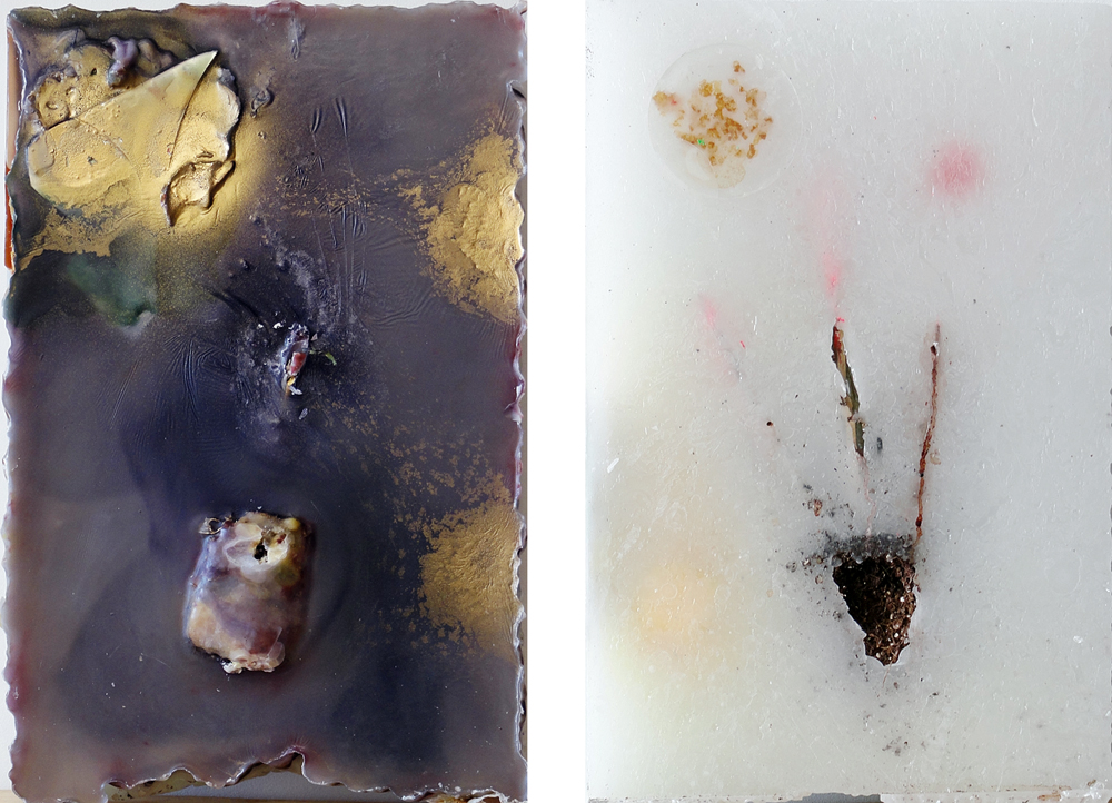 Medicine Plant, 2010, Wax and mixed Media, 12 x 18 x 6 inches