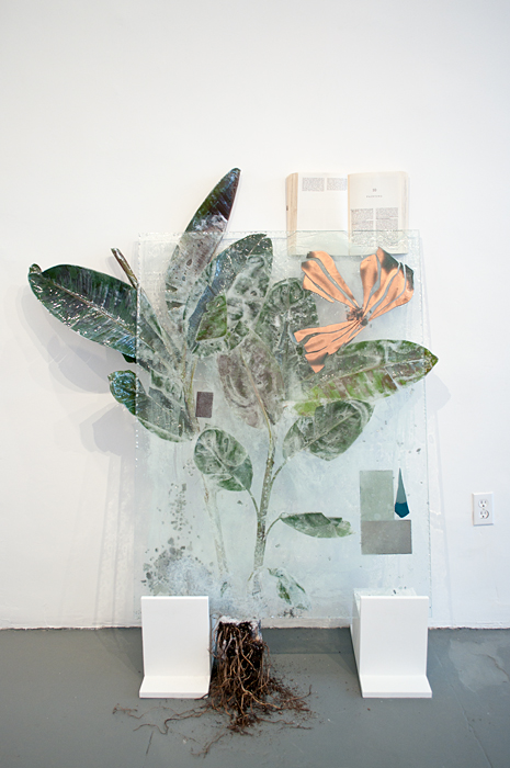 I Saved the Best for Last (Banana Plant), 2011, Glass, resin, plant, mixed media, 36 x 58 inches