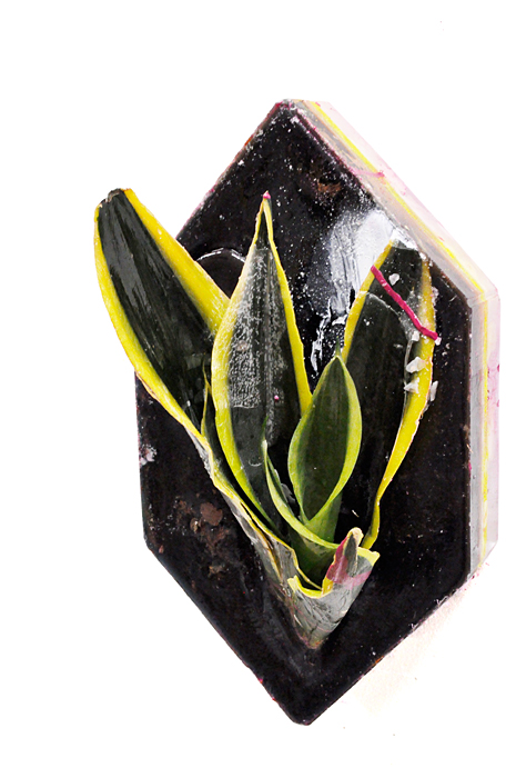 Untitled, 2011, Wax and mixed media