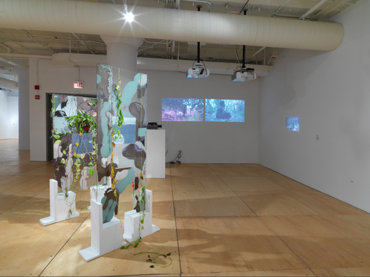 Ghost Nature, Gallery 400 at University of Illinois at Chicago, 2014