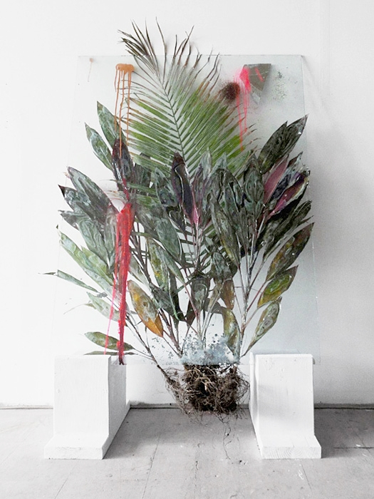 Untitled, 2011, Glass, resin, plant, mixed media, 36 x 58 inches