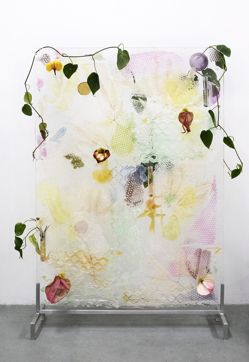 Spadix Inflorescence Wet Plate, 2018  Acrylic, resin, anthuriums, philodendron, gel fertilization balls,  dichroic glass, glass, moss, aluminum stand  36 x 52""