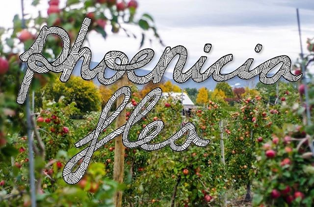 So excited to be a part of the @phoeniciaflea this weekend at Stone Ridge Orchard, NY! 🍎