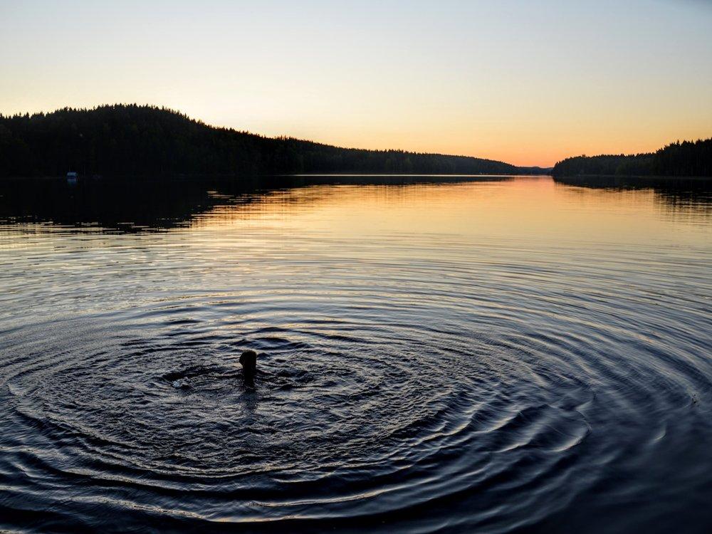 Wellness & Nature -