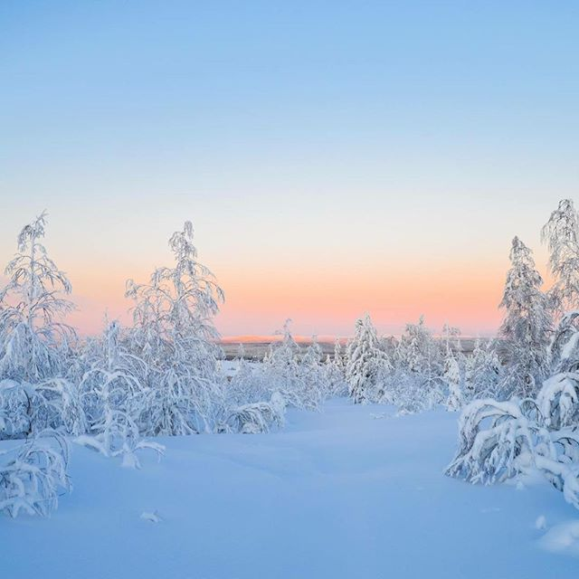 #pinkmoment on our #skiing #adventure in #kuusamo #finland  #winter #winterwonderland #nature #naturephotography #naturelovers #landscape #paradise #outdoors #outdoorculture #ignature #outdoorlife #youradventureofthelifetimebeginstoday #adventureapes