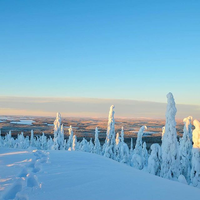 #winterwonderland #kuusamo #visitfinland #visitkuusamo #adventuretime #adventuretravel #travelling #landscape #winter #snow #snowwhite #lifeisnow #nature #naturephotography #youradventureofthelifetimebeginstoday #adventureapes