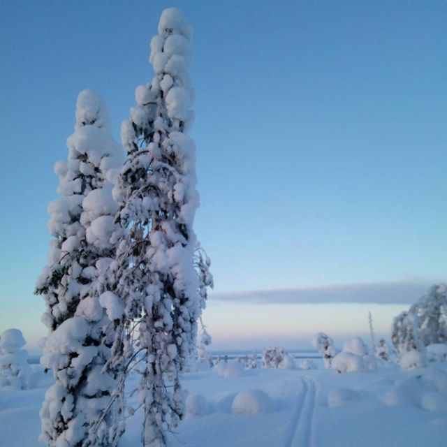 #skiing in the #winterwonderland in #kuusamo. #visitfinland #visitkuusamo #offroad #bluesky #snow #adventure #outdoors #youradventureofthelifetimebeginstoday #adventureapes