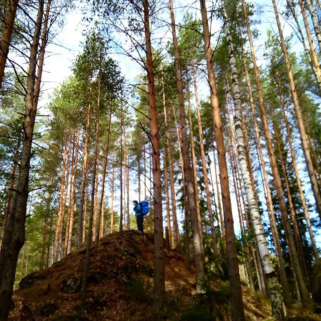 Introduction course to hiking in Finland. #hiking #outdoors #outdoorslife #evo #forest #nature #naturelovers #relaxing #visitfinland #getoutstayout #youradventureofthelifetimebeginstoday #guidedtour #adventureapes