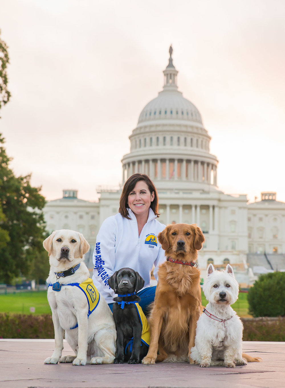 Pet Portraits in the District of Columbia