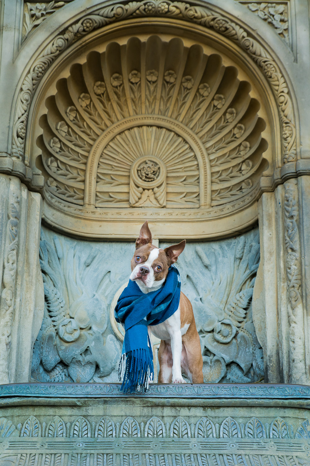 There were some beautiful carvings in this water fountain which really brings this pet portrait to life.