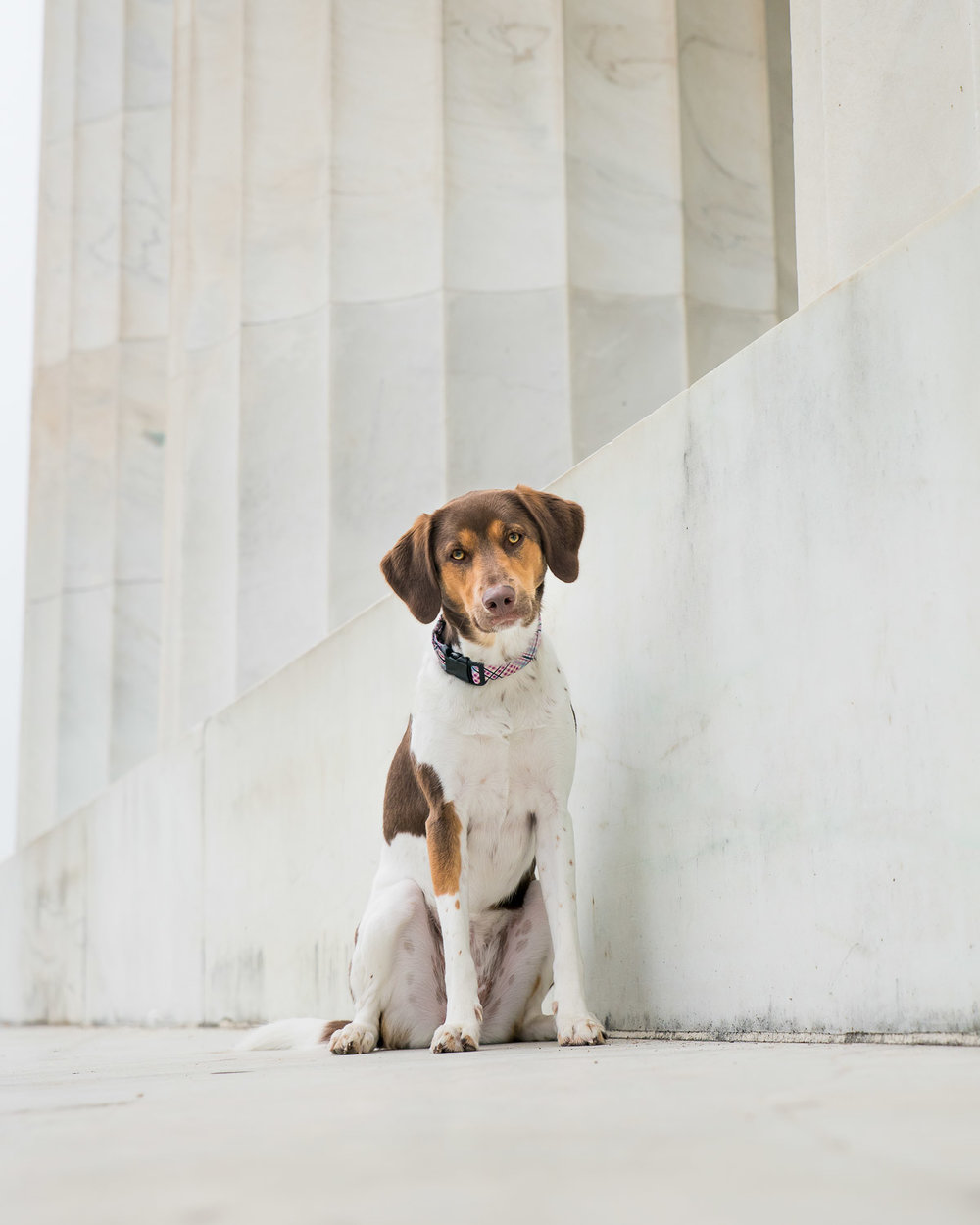 One of our detail shots with Olivia at the base of a Lincoln Memorial column