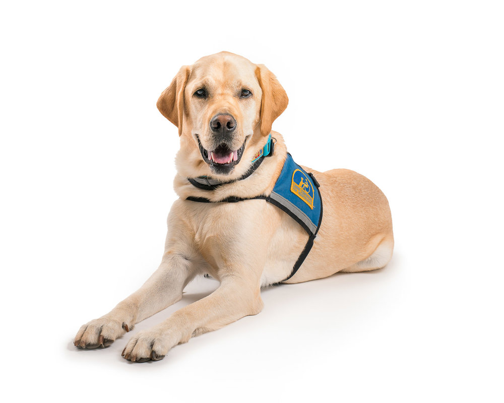CCI Canine Companions for Independence - 001.jpg