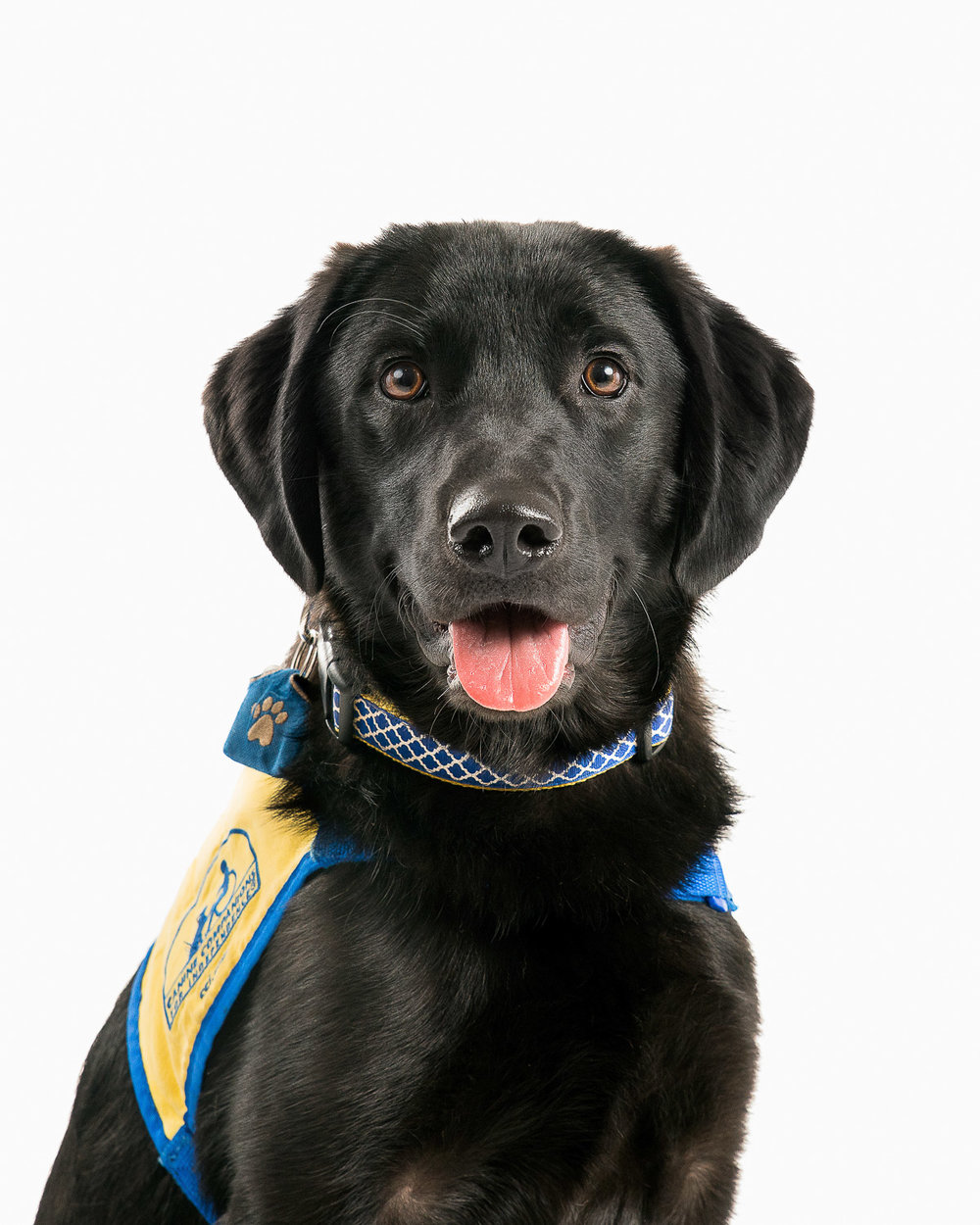 CCI Canine Companions for Independence - 002.jpg