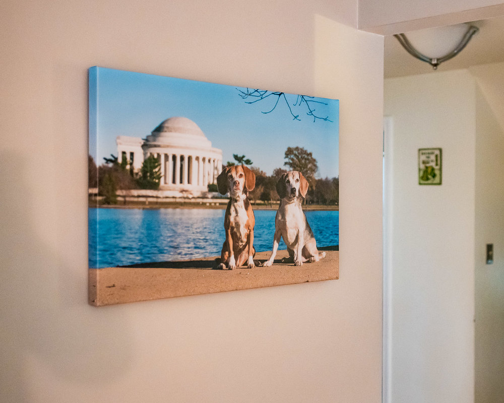 Order a beautiful canvas and we hang it in your home for you
