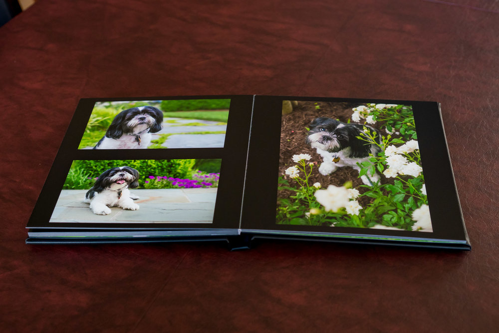 Check out this stunning leather bound album
