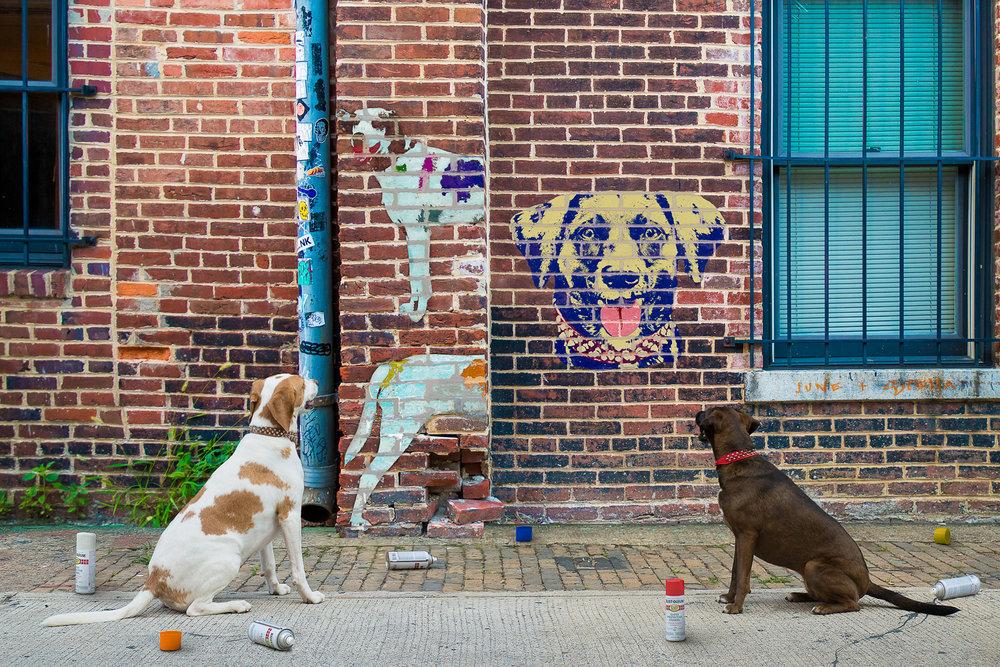 Dogs Graffiti Wall in Washington DC