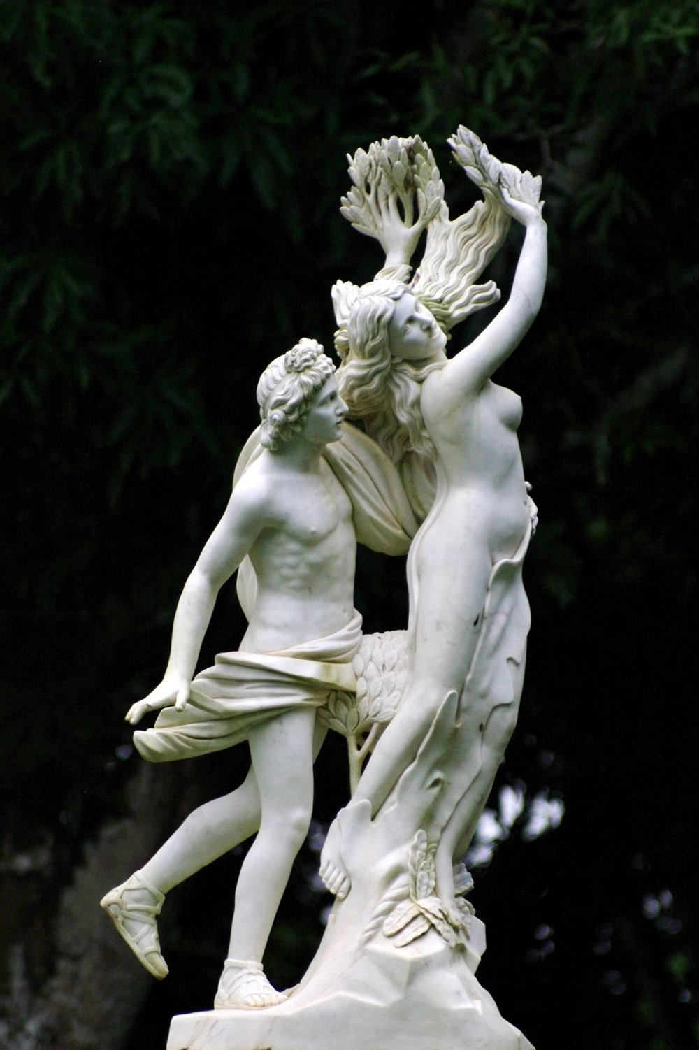 Apollo and Daphne by Bernini - photo credit: Guilherme Jofili