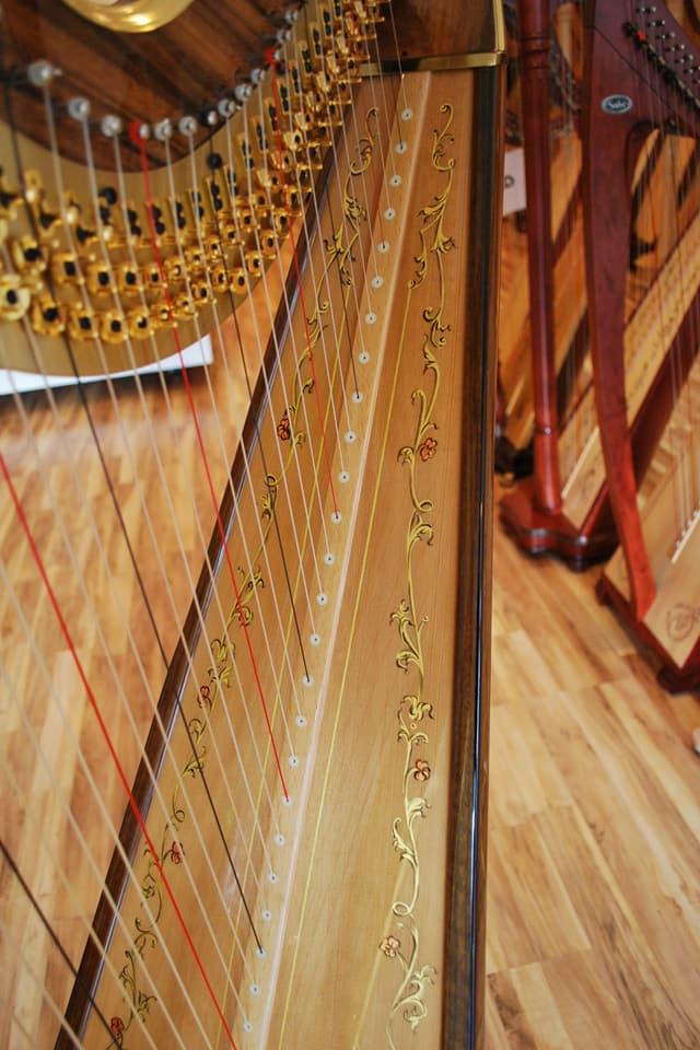 The Michigan Harpist (2).jpg