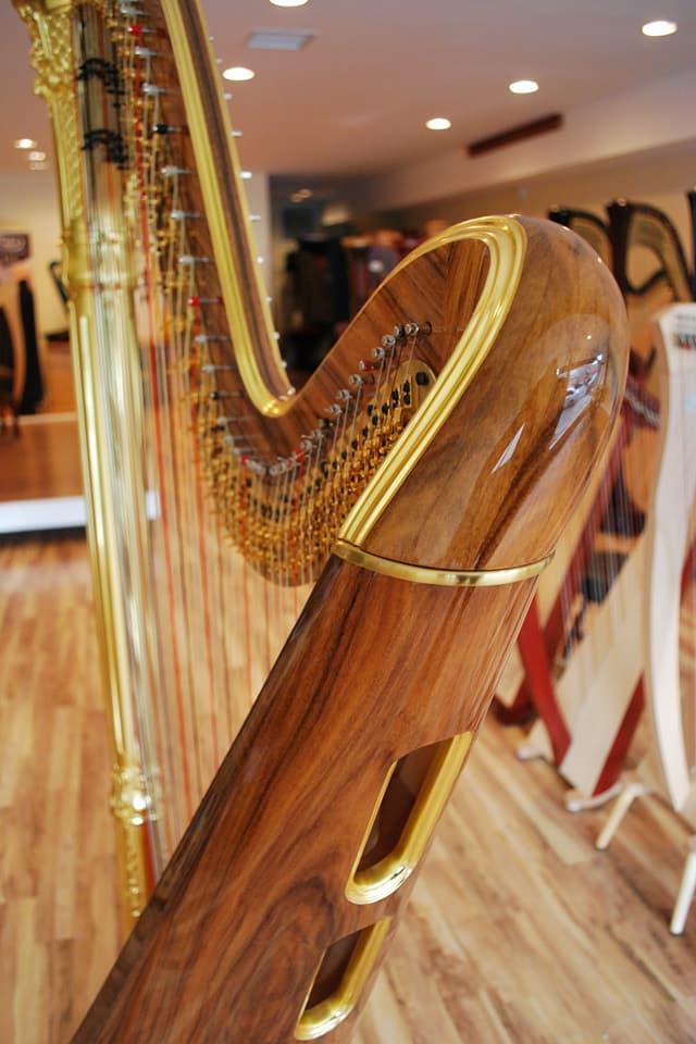 The Michigan Harpist (9).jpg
