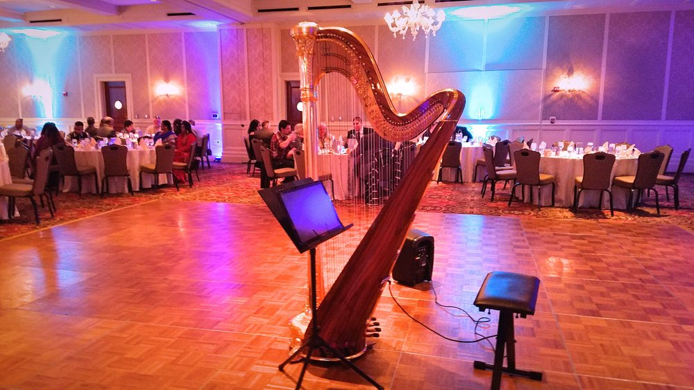 Michigan Harpist - Weddings Parties and Lessons