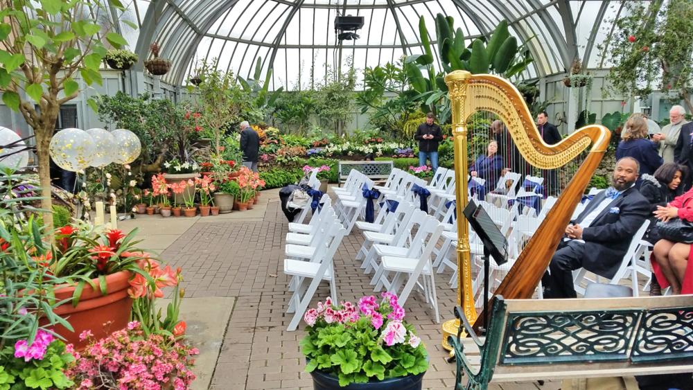 The Michigan Harpist Weddings Events