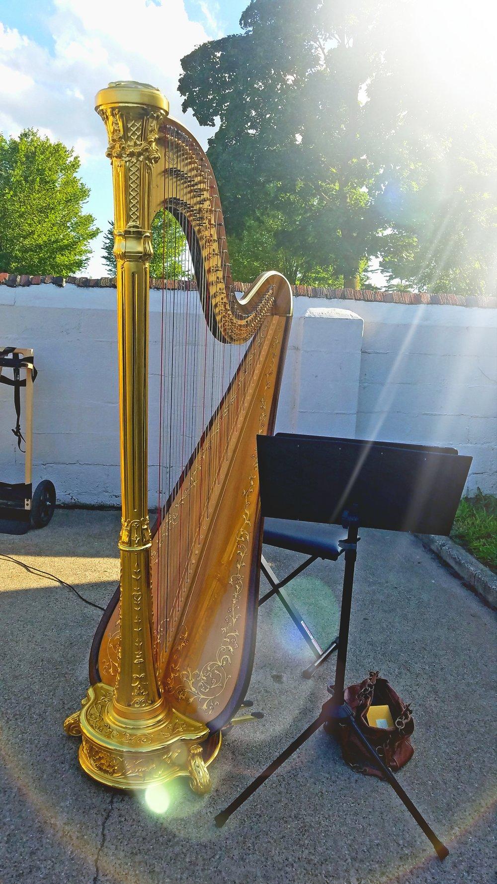 Michigan Harpist Weddings and Events