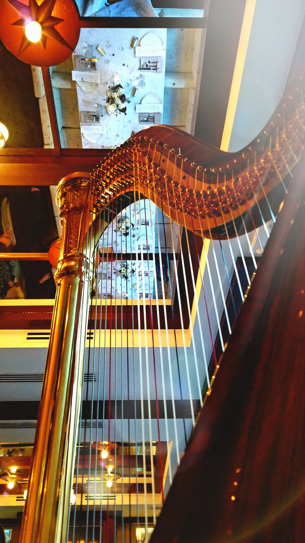The Michigan Harpist Weddings and Events (17).jpg