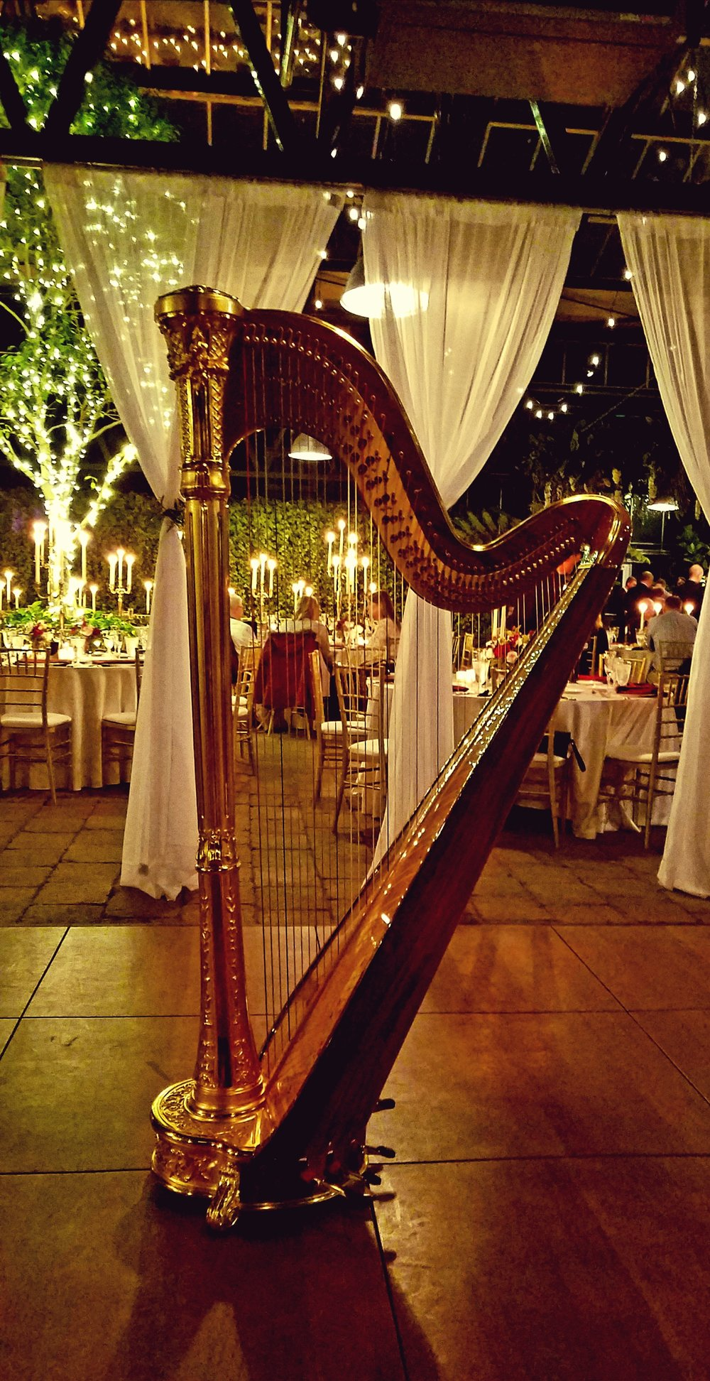 The Michigan Harpist Weddings and Events (21).jpg